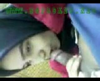 Siswi Berjilbab Jilat Kontol