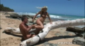 Hot Blonde Hradly Fucked On Beach