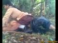 Pelajar Ngentot Di Hutan   Bokep Indo ABG Tante Bispak Mesum Skandal SMU   indobokep.mobi