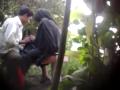 Video Bokep Ngintip pasangan selingkuh ngentot Hijab dikebun Terbaru