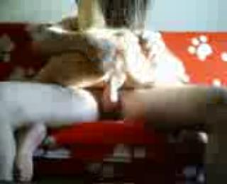 Download vidio bokep Michelle Lele Beijing Sofa Fun mp4 3gp gratis gak ribet